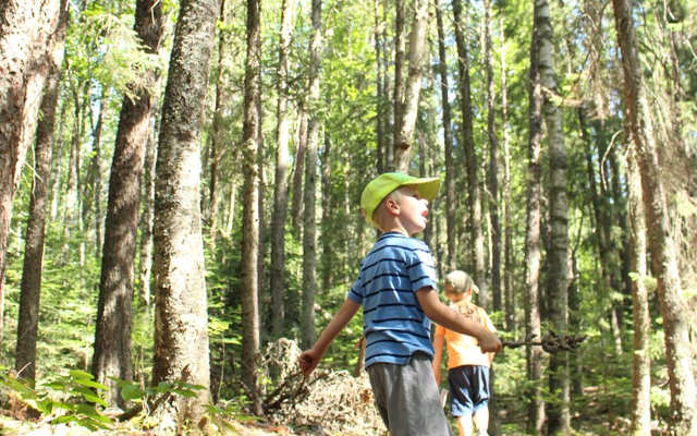 Image showing two children walking down a heavily forested path.