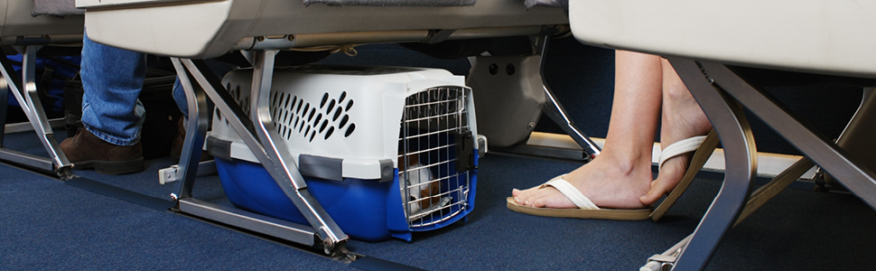 A pet carrier placed underneath an airplane seat.